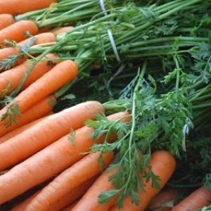 И вновь о моркови
