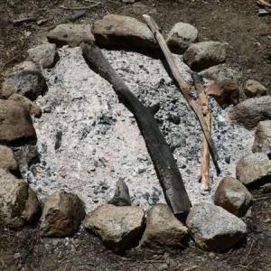 Древесная зола – несомненная польза для почвы и растений
