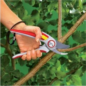 Замазка для деревьев из натуральных составляющих